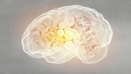 brain thinking systems and cognitive distortions